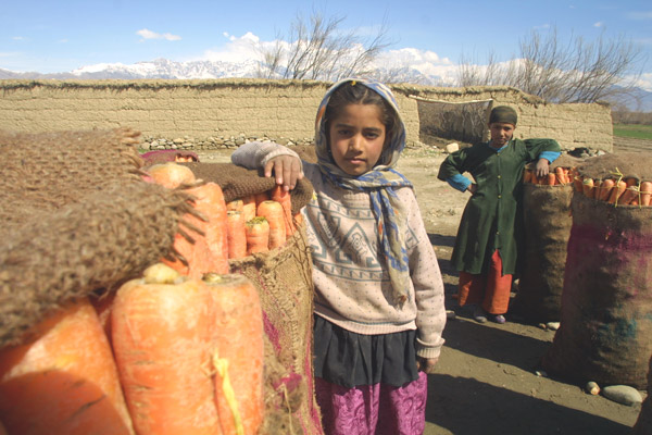 Children stand by bags of harvested carrots in Afghanistan. USAID Photo.