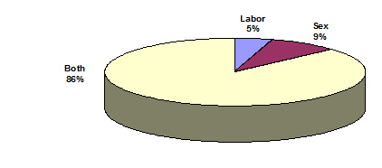 Pie chart depicts USG anti-TIP project funding by type of trafficking: sex trafficking -  9 percent;  labor trafficking - 5 percent; and both labor trafficking and sex trafficking - 86 percent